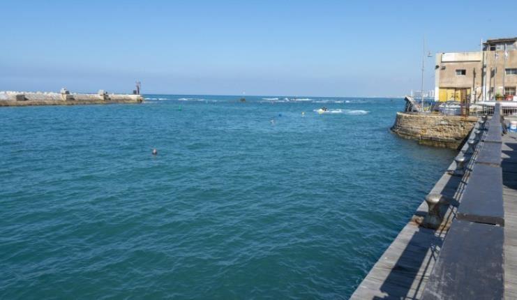 הנמל והמרינה של יפו